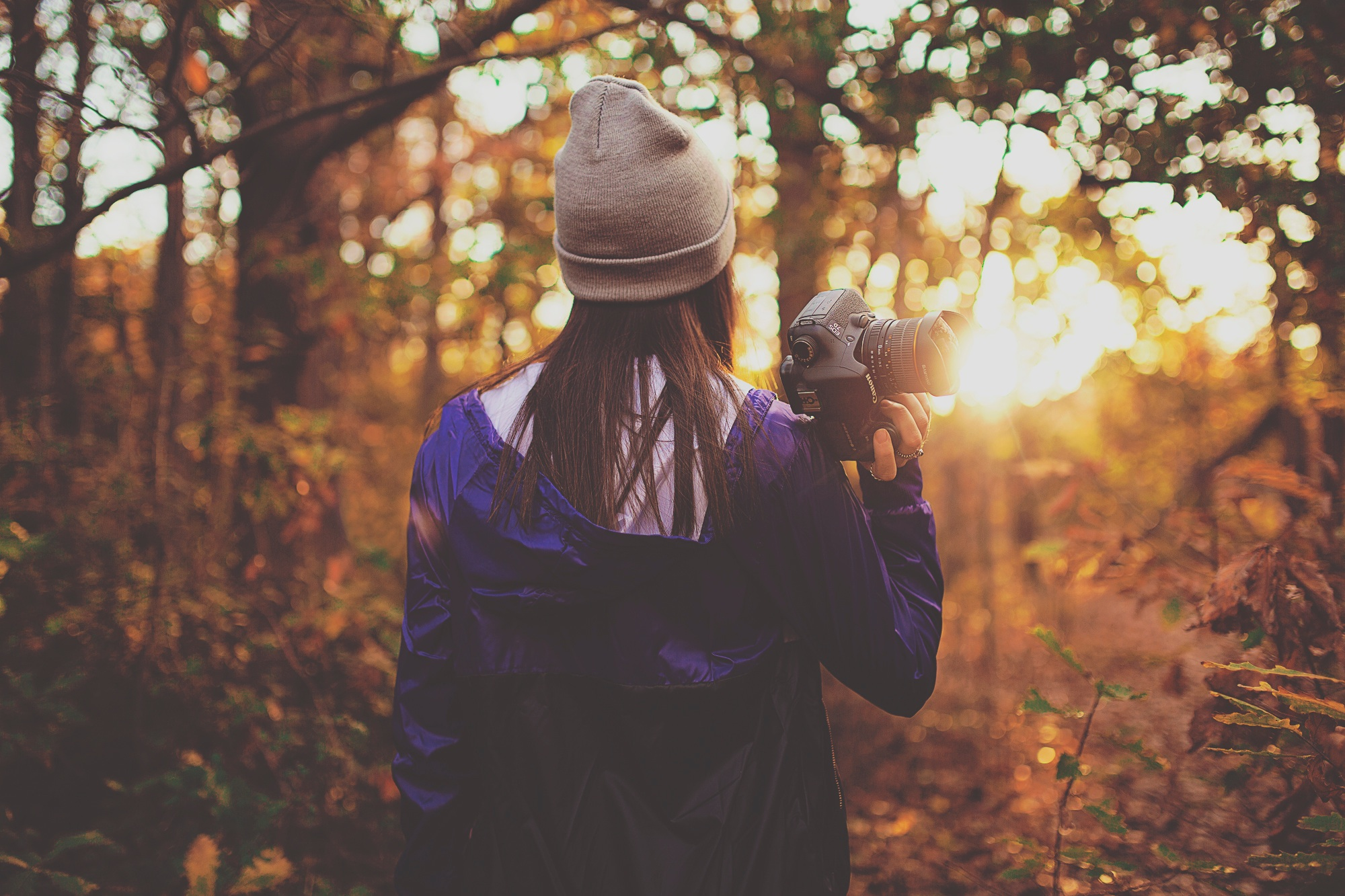 Eine von hinten aufgenommene Frau ist mit Kamera im Herbstwald unterwegs