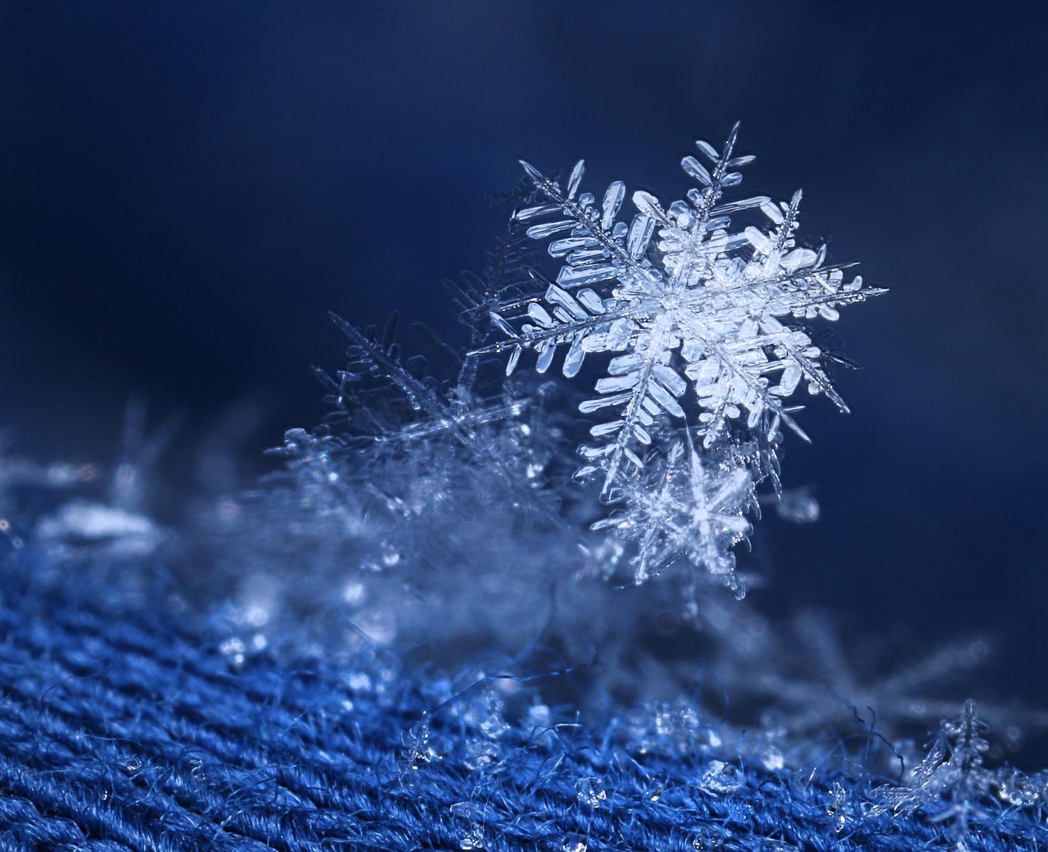 Eine unversehrte Schneeflocke auf blauer Wolle.
