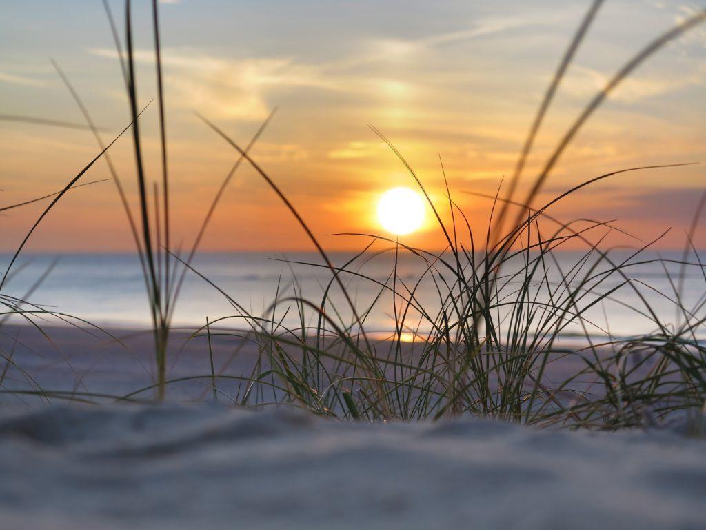 Sonnenuntergang am Meer, im Vordergrund Strandhafer.